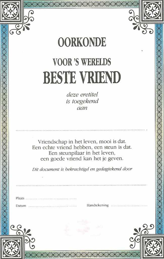 Partnervermittlung nl